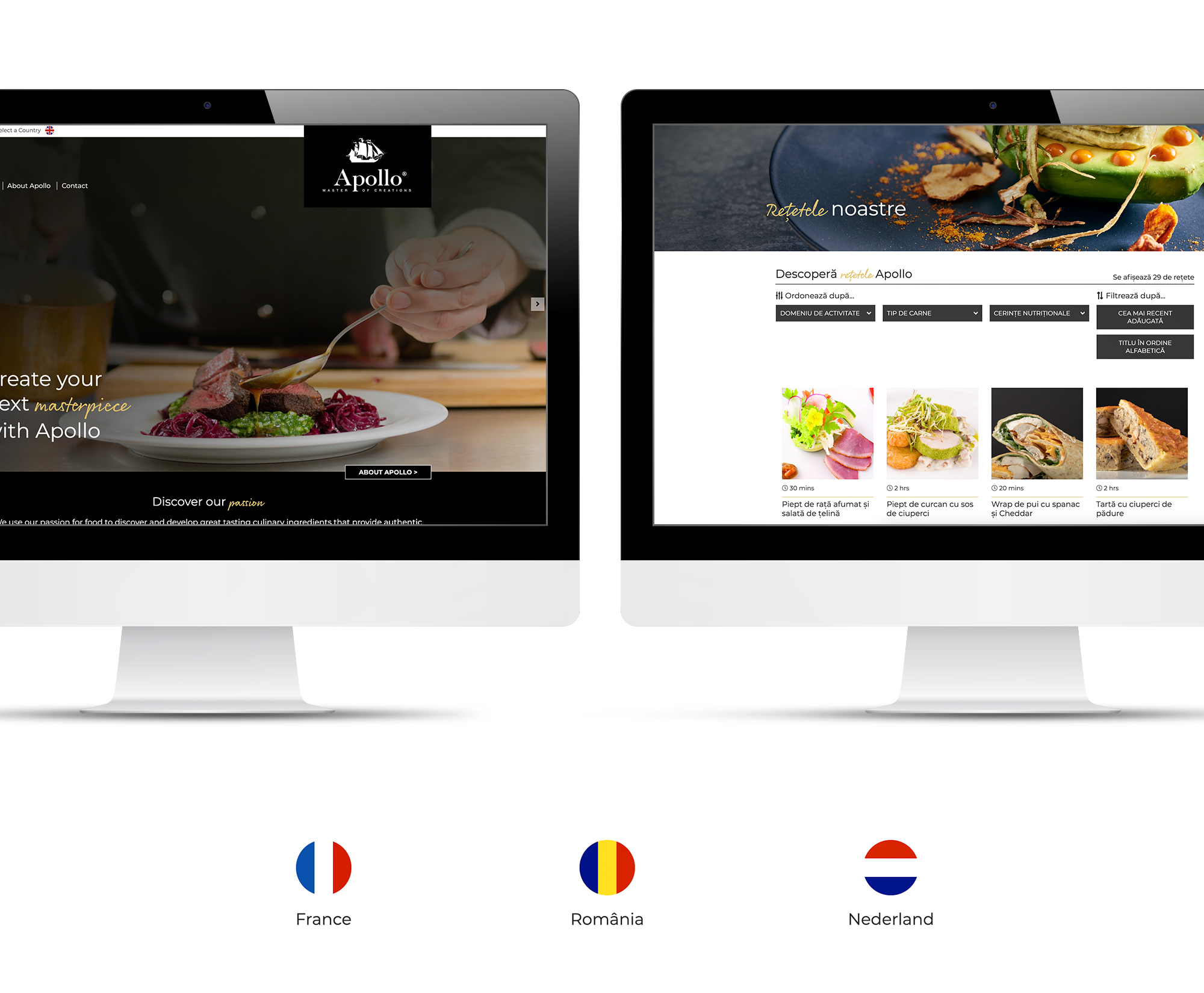 Multilingual Website for Apollo Food
